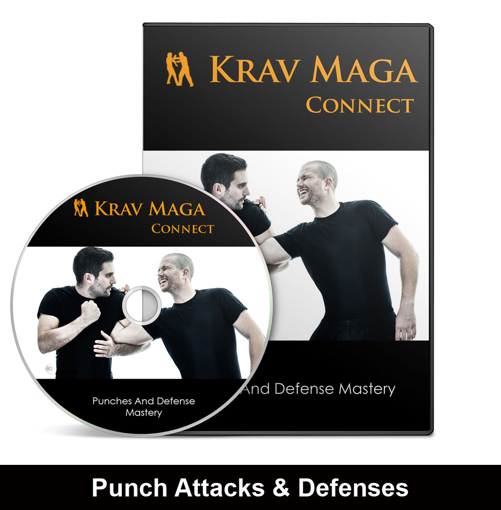 Punch Attack And Defense