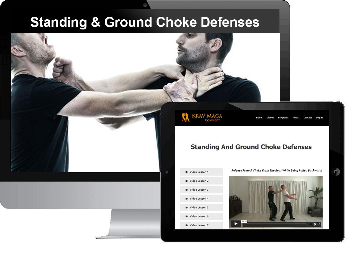 Standing & Ground Choke Defenses