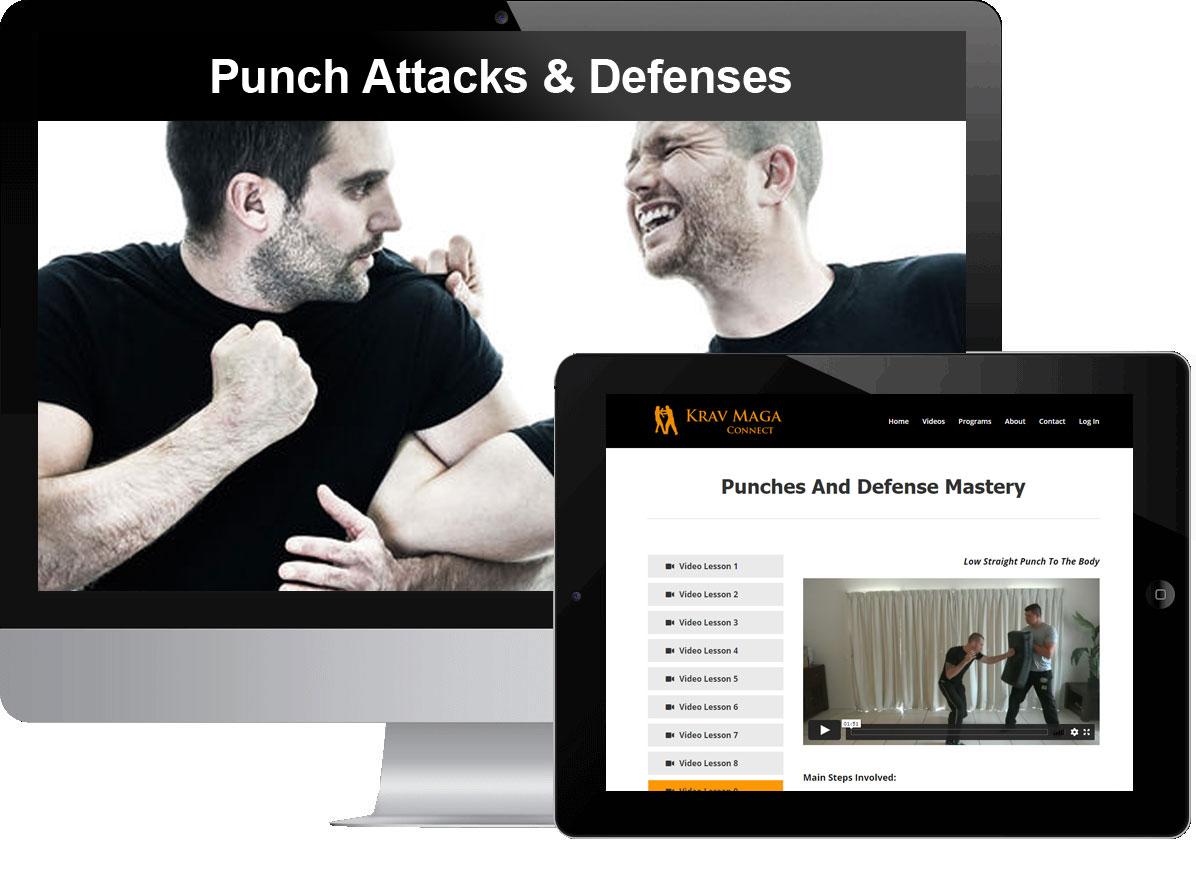 Punch Attacks & Defenses